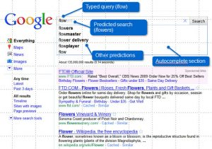 Google Instant Search for Marketing